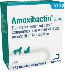 Amoxibactin® 50 mg tablets for dogs and cats.